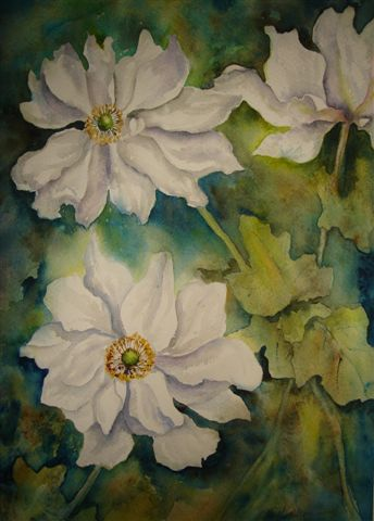 2007 Japanese Anemone Watercolour