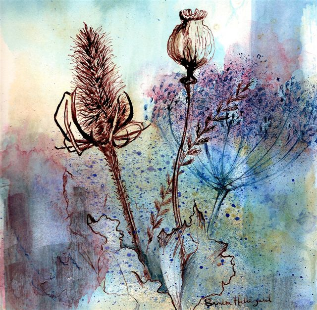 2007 Teasel & Poppy Watercolour + ink