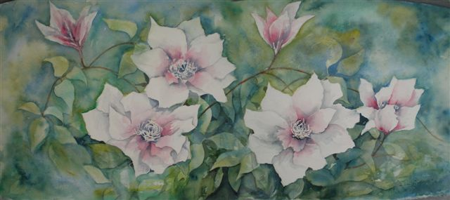 2008 Clematis Panorama Watercolour