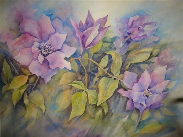 2008 Clematis Watercolour