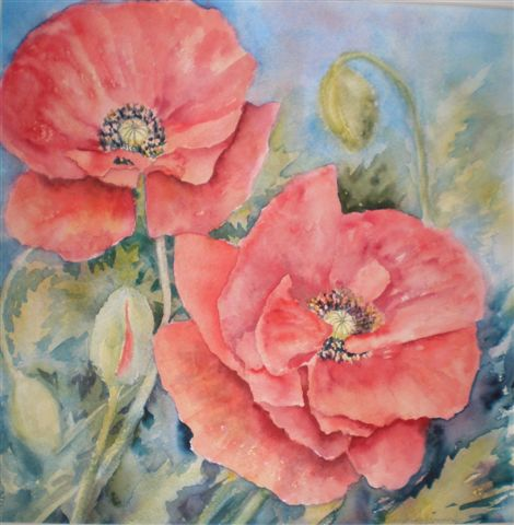2008 More Red Poppies Watercolour