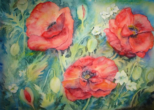 2008 Papaver & Pelargonium Watercolour