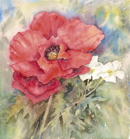 2008 Red Poppy and Geraniums Watercolour