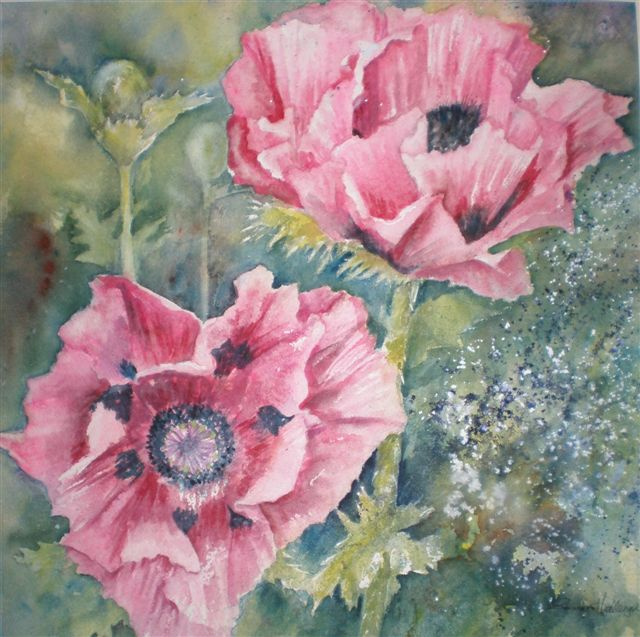 2009 Pink Poppies Watercolour