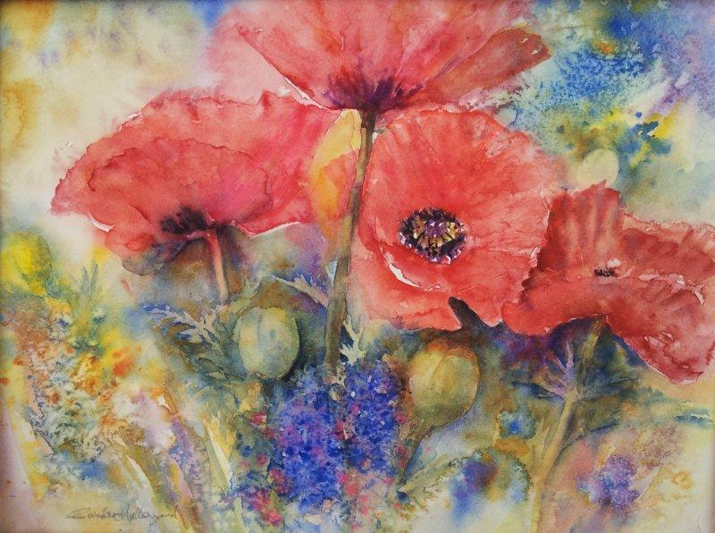 2012 Red Poppies Watercolour