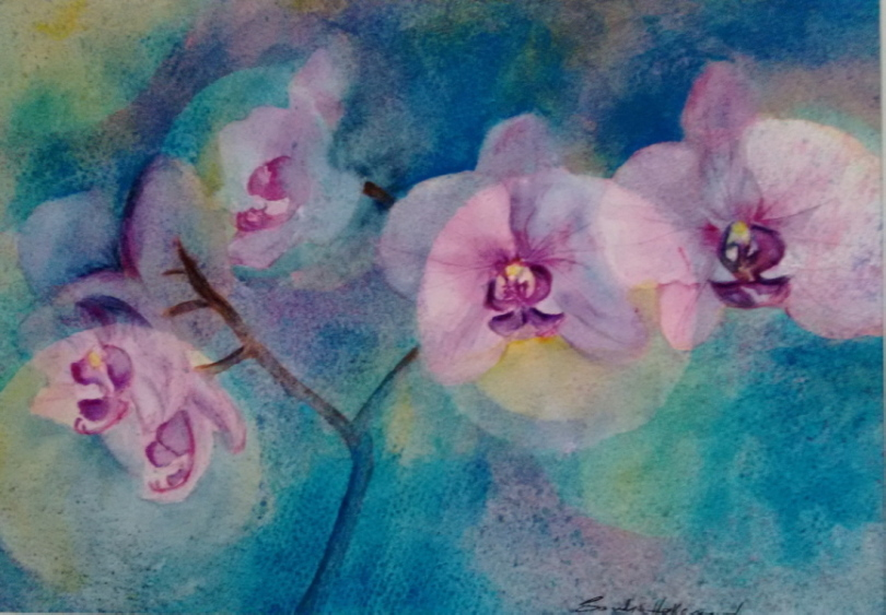 2016 Orchids Watercolour + ink